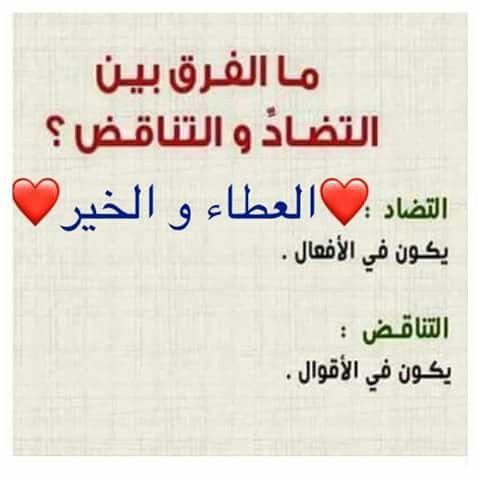 Pin By Abditch219 On اللغة العربية Bullet Journal Journal Calligraphy
