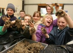 Great website on teaching about soil lots of free for Soil king productions