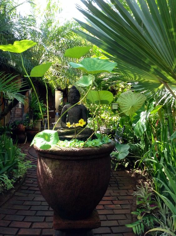 Front Entrance. Buddha statue in lotus pot. Balinese House, Balinese Garden.