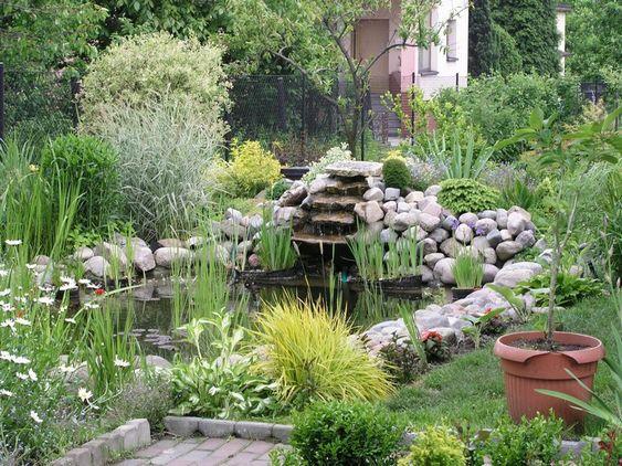 Bassin de jardin avec cascade plantes vertes gramin es ornementales et fleurs en pots garden - Cascade de jardin castorama lyon ...
