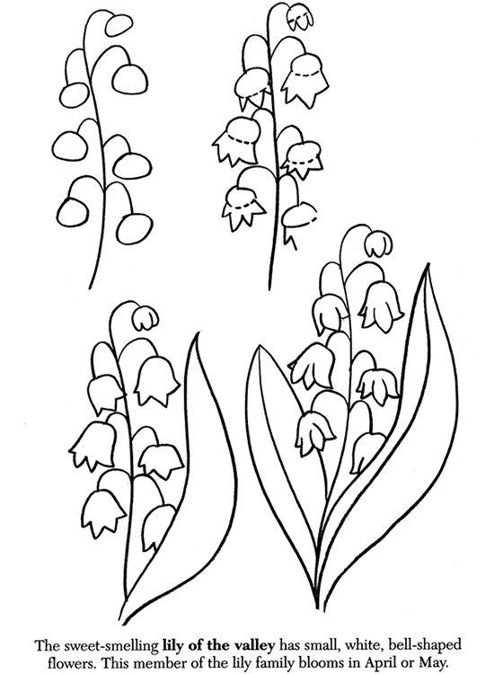apprendre a dessiner une fleur. Black Bedroom Furniture Sets. Home Design Ideas