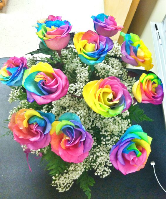 Rainbow roses flower and rainbows on pinterest for Rainbow dyed roses