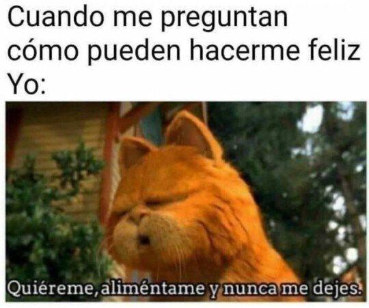 Soy Un Ser Facil Memes Risas Memesespanol Instagram Fotos Chistes Top Comic Love Hoy Friends Amor Mexico Memesmexi Memes Humor Free Movies Online