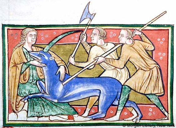 1179, Bestiary, MS M.81 fol. 12v - Unicorn and Virgin.  It is not always the virgin who catches the unicorn, leading it gently to the king.  Although it was her maidenly presence that lured and bemused the beast, brutal hunters prostrate the defenceless creature.