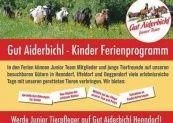 Gut Aiderbichl – Michael Aufhauser