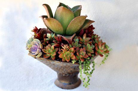 handmade pedestal jadebox by Barabas Design