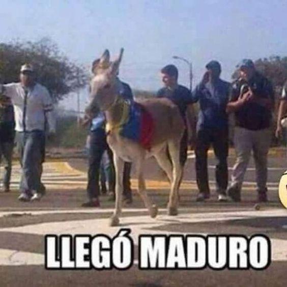 Nicolás Maduro protagoniza los memes de la VII Cumbre de las Américas – Publimetro