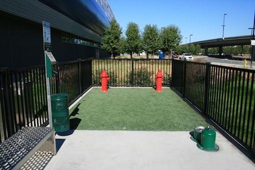 Backyard Dog Run Ideas traditional landscape by avant garden Backyard Dog Run Ideas Google Search