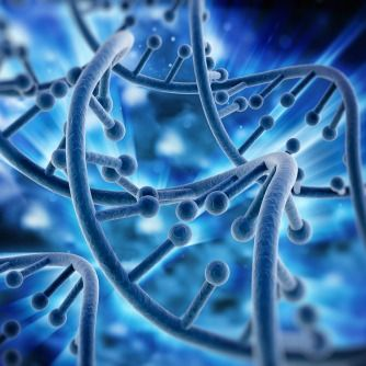 Safer Gene Therapy Developed