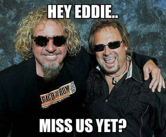 Sammy & Mickie - doing just fine without VH!!!