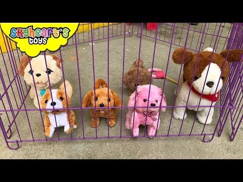 Little Live Pets Puppy Demo Video Youtube Toy Puppies Little Live Pets Dogs And Kids
