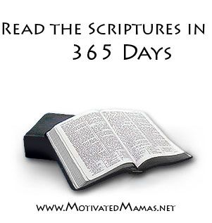 This includes the Bible, both Old and New Testaments as well as the Book of Mormon, Doctrine & Covenants and  Pearl of Great Price.  You can start the challenge at any time! :)