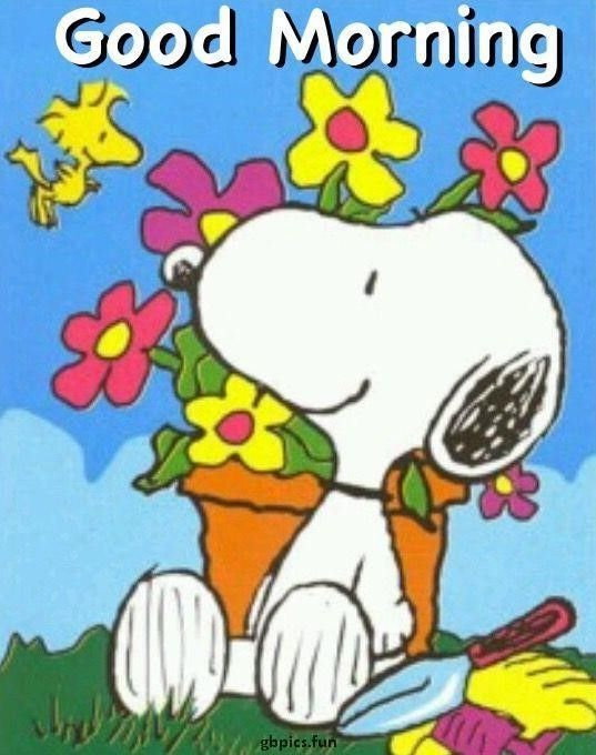 Morgen snoopy bilder guten 57+ Snoopy