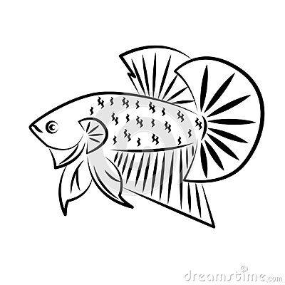 Betta Wild Outline Betta Wild Fish Line Art Golden Minimalist Vector Logo Betta Burung Elang Ikan Cupang