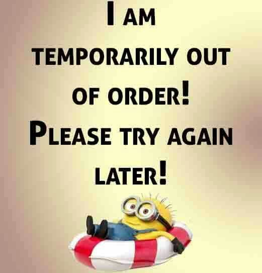 Minions Funny Minion Quotes Funny Quotes Short Funny Quotes