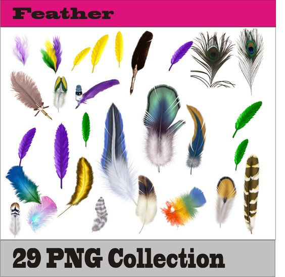 Feather Frame Party Accessories PNG Vector Instant Download Clip Art Clipart Digital Albums Cards Page Decoration Birthday By SlavGraphics On Etsy