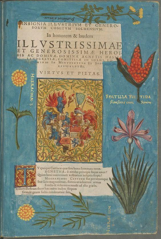 Description du baptême de Madame Élisabeth de Hesse — Afficheur — Bibliothèque numérique mondiale