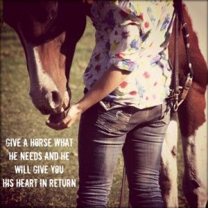 give a horse what it needs: aspottedpony.com