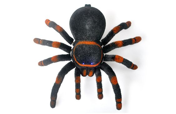 RC Tarantula - 2.4GHz Frequency, Support Android + iOS
