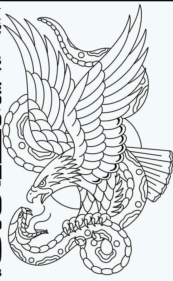 Eagle Vs Snake Art Old School Tattoo Designs Traditional Eagle