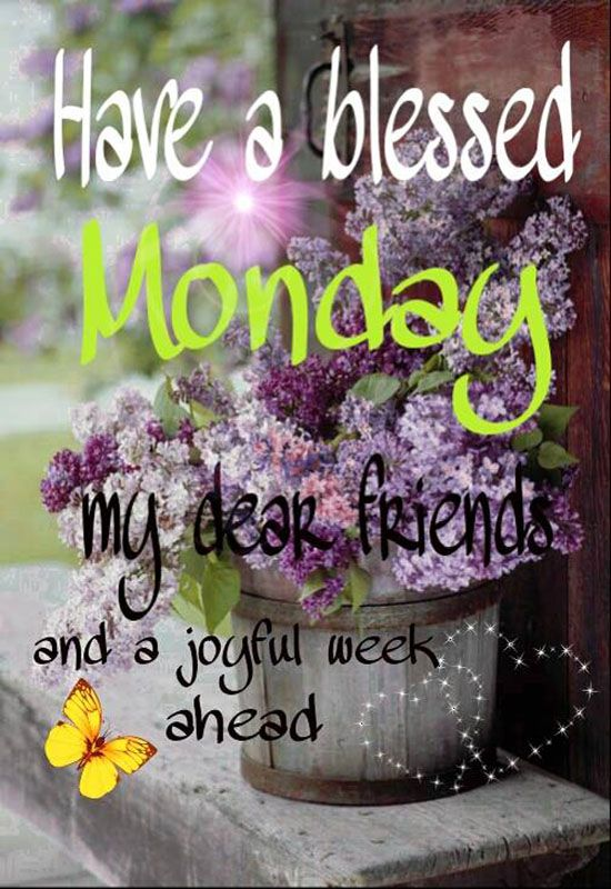 Have a blessed Monday & enjoy your week! ♥: