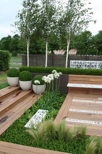 Contemporary contemplation garden by garden designer for Structural plants for small gardens