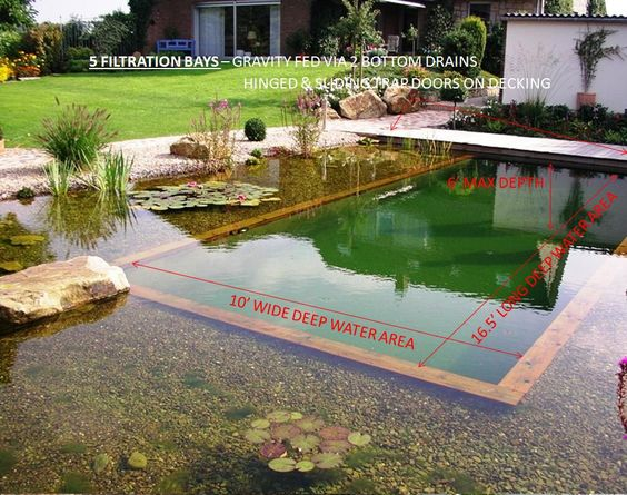 Natural swimming pool no chlorine low maintenance if for Natural pond maintenance