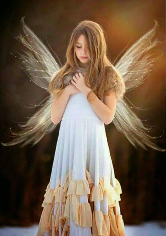 كن حريصا ان لا تظلم قلوب خضراء لا تعرف سوا ان حب الخلق من حب الخالق Flower Girl Dresses Fairy Angel Angel