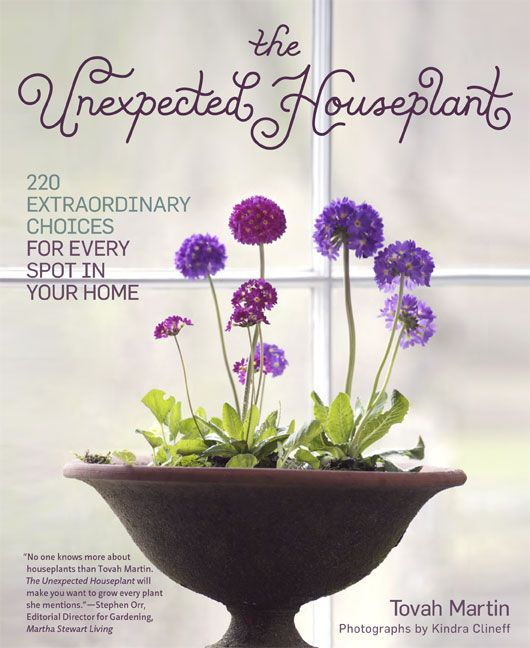 The Unexpected Houseplant: 220 Extraordinary Choices for Every Spot in Your Home, Timber Press