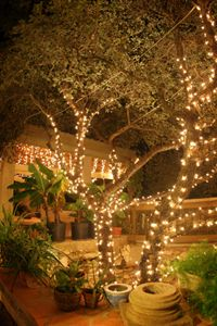 lighting for an outdoor event