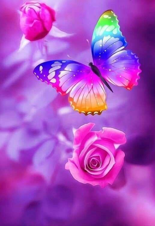 Pin Von Seelen Farben Auf Schmetterling Hintergrundbilder