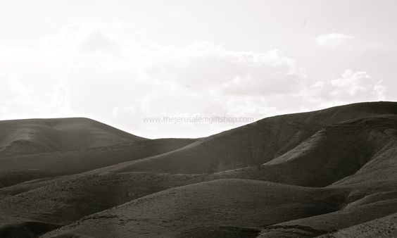 Judean Hills Photo By: Pascale Korson