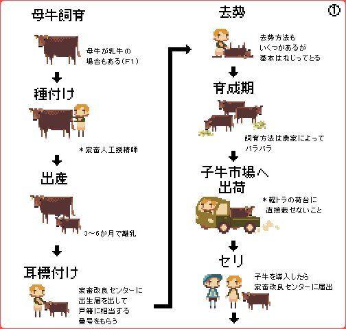 去勢は基本ねじってとる かわいいドット絵で屠殺を描いた 牛肉を