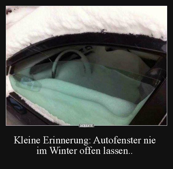 Kleine Erinnerung: Autofenster nie im Winter offen lassen.. | Lustige Bilder, Sprüche, Witze, echt lustig