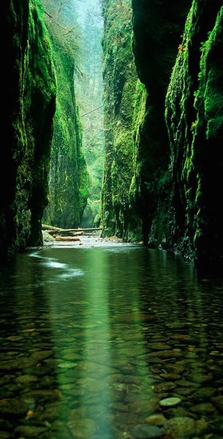 Oneonta Creek/Gorge in the Columbia River Gorge National Scenic Area east of Portland, Oregon • photo: vanchocstraw on Flickr