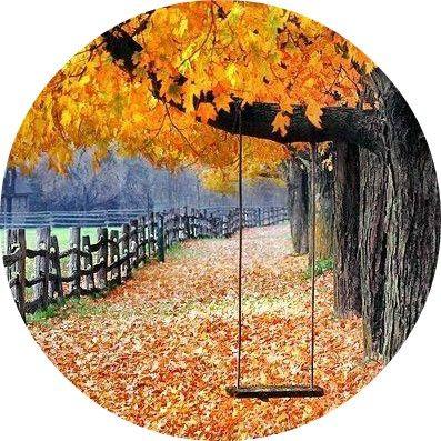 Статус про осень картинки