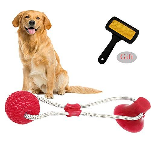 Sendk Dog Ropes Toy With Pet Bath Comb Pet Supplies Self Playing Rubber Ball Toy With Suction Cup Dog Interactive Molar Chew T Pet Toys Dog Deals Pet Supplies
