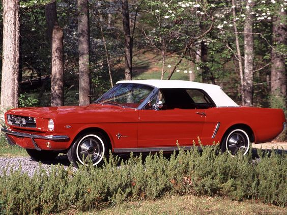 64½ Mustang (the fun we had together)
