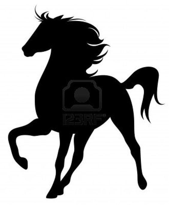 Purebred stallion fine vector silhouette - black horse outline against white Stock Photo
