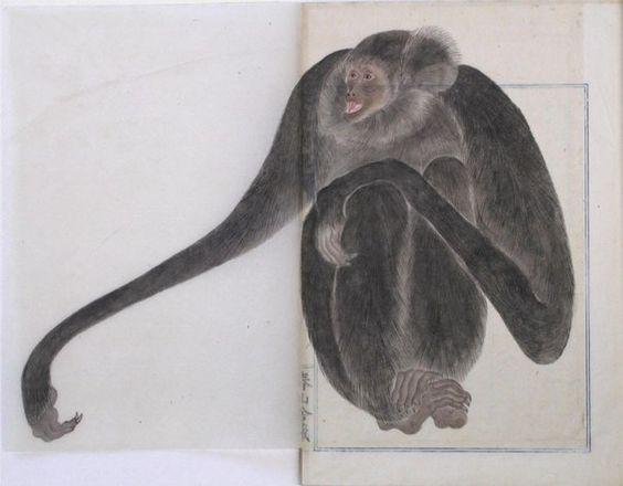 伊藤 若冲 itō jakuchū. Japan. Edo period. Monkey or macaque.