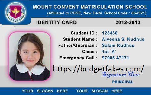 Where To Buy Scannable Fakes School Id Id Card Template Employee Id Card