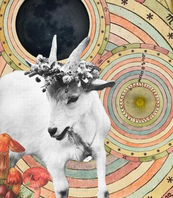 NEW MOON in Capricorn and SOLSTICE December 21st 2014~: