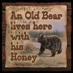 Black Bear Decor & Bear Gifts - Black Forest Decor