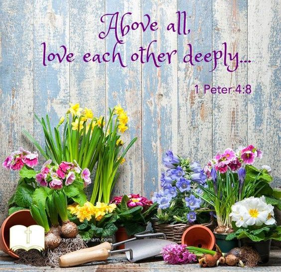 Look at others through the lens of God's love and see them through His perspective. Above all, LOVE...!