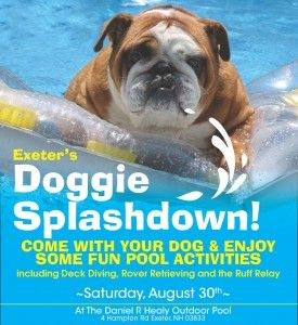 Doggie Splashdown Pool Party In Exeter St Annual Event At The Town Pool Doggiepaddle Poolparty Doglover Splashdow Pool Activities Doggy Healthy Pet Food