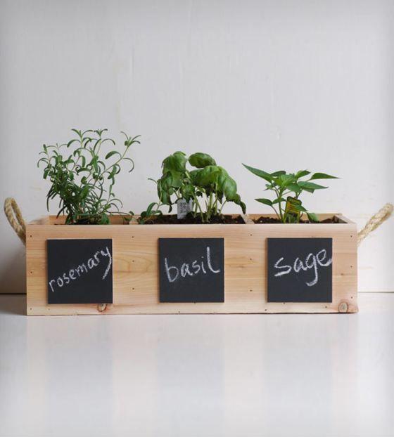 Plantas aromaticas en la cocina inspiraci n cocina - Plantas en la cocina ...