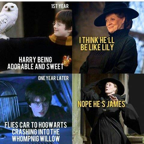 Da Meine Freundin Gerade Voll Auf Dem Harry Potter Trip Ist Habe Ich Humor Humor Amreading Harry Potter English Harry Potter Goblet Harry Potter Feels