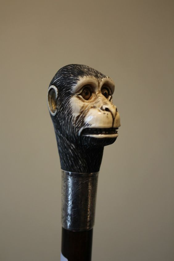 Walking cane with an ivory carved top of a monkey, period circa 1900