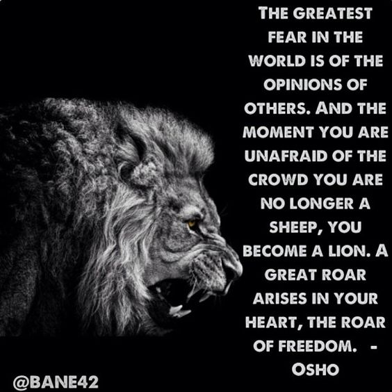Lion Sheep Quote: So Grateful To Mom! She Helped Me To Walk Away From