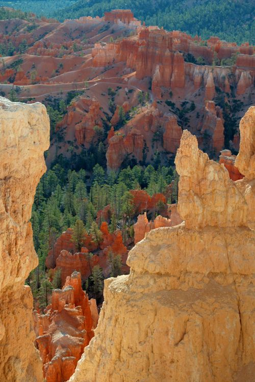 bryce canyon singles Walk along the rim of bryce canyon and feel an overwhelming sense of awe at the otherworldly,  single accommodations you can request single room accommodations,.